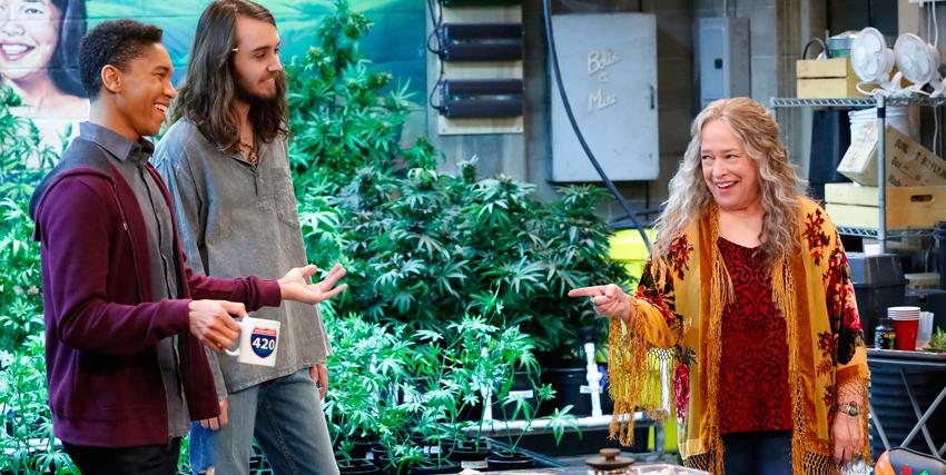 kathy bates vestita da fricchettona indica sorridendo due ragazzi, mentre sullo sfondo c'è una coltivazione di marijuana - nerdface