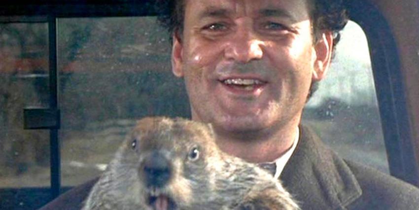 nerdface nerd origins bill murray il giorno della marmotta