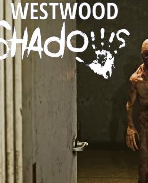 Copertina ufficiale del videogioco Westwood Shadows - nerdface