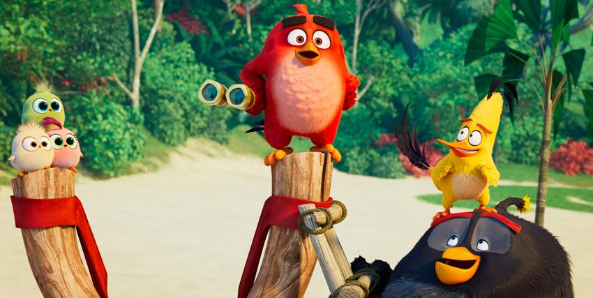 red guarda l'orizzonte sopra un trespolo di legno circondato dai suoi amici pennuti - nerdface