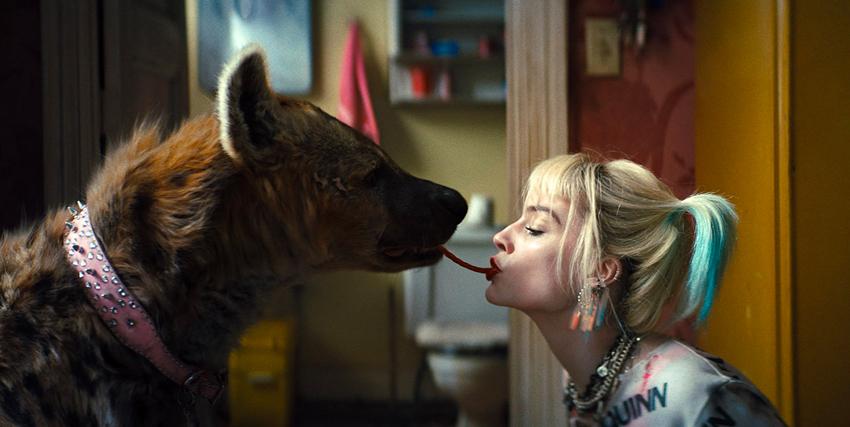 come lilli e il vagabondo, harley quinn condivide la sua caramella gommosa col suo animale da compagnia, una iena - nerdface