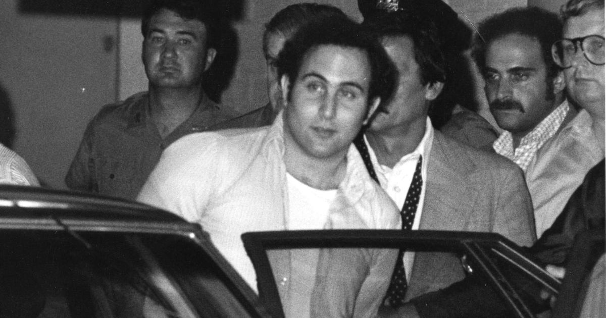 david berkowitz è arrestato e fatto sedere nel retro di una macchina - nerdface