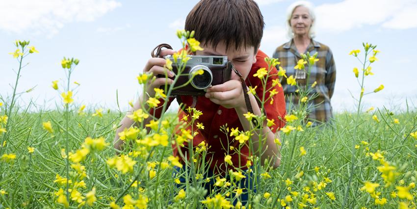 un bambino fotografa i dettaglio di un prato coperto di fiori gialli - nerdface
